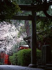 人生の道を切り開く猿田彦神社